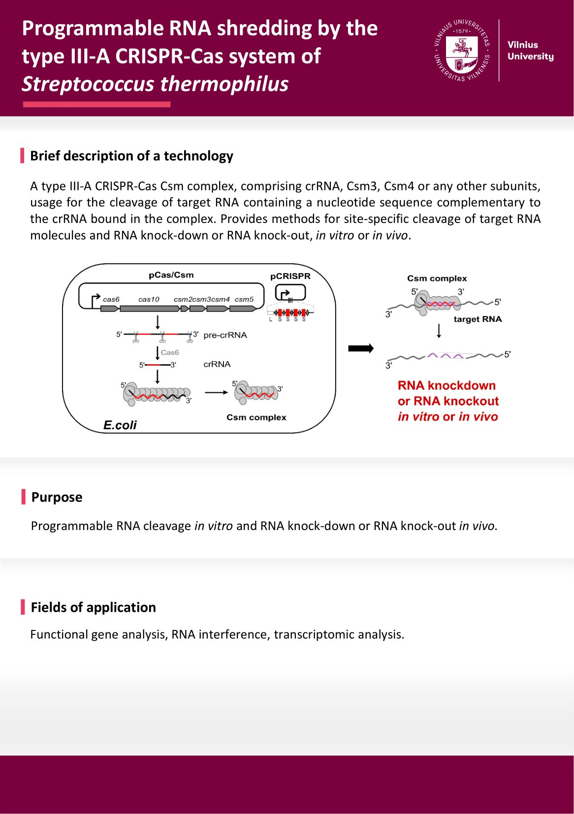 Programmable RNA shredding by the type III A CRISPR Cas system of Streptococcus thermophilus 0002